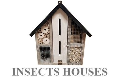 Insects houses